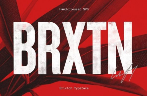Brixton Wood Display Font